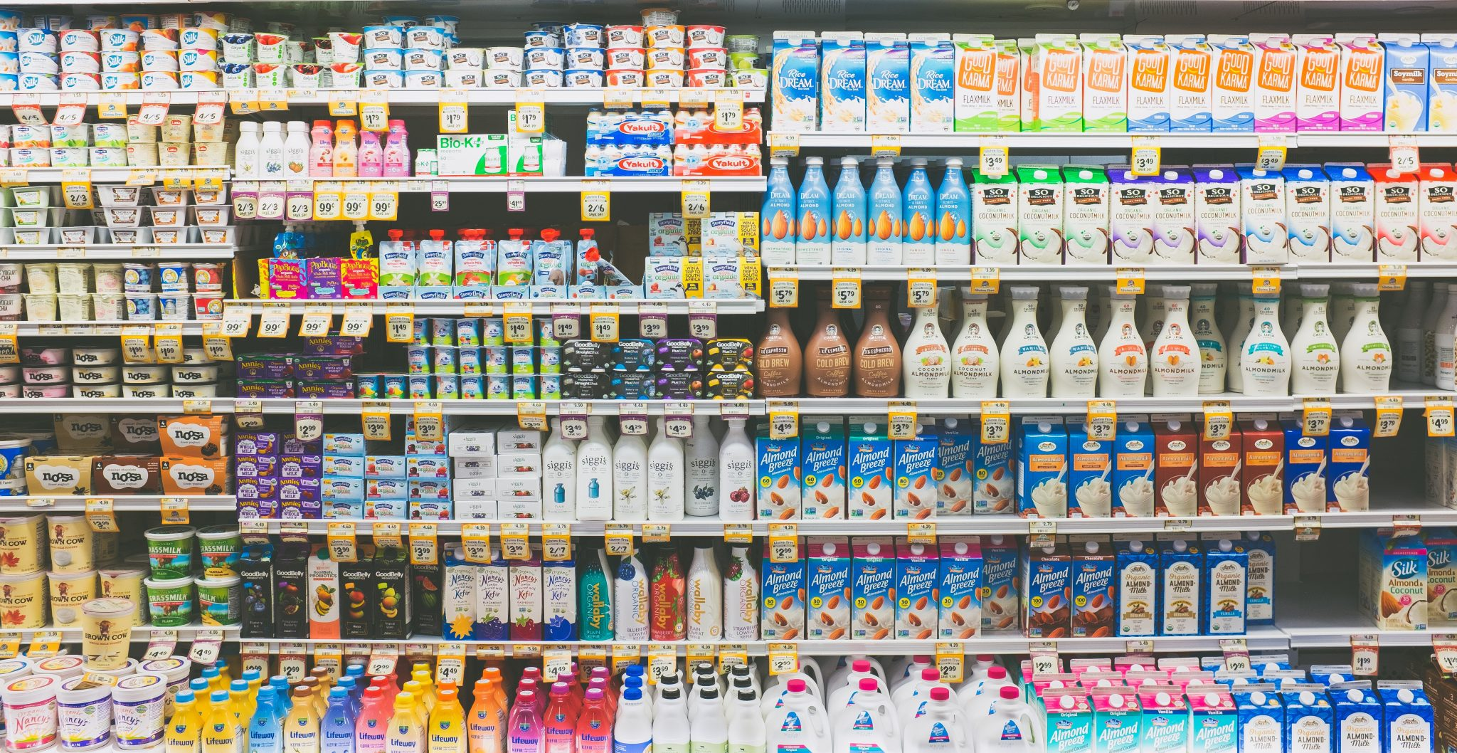 The milk and dairy shelves at the grocery store, full of dairy and nondairy alternatives